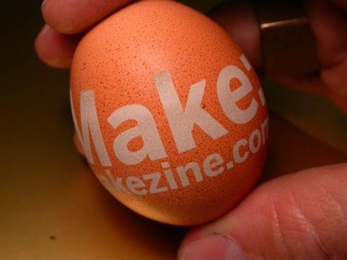 Egg-Close-Up