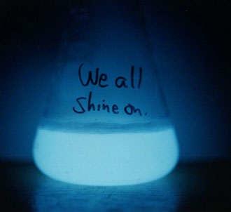 glowybacteria.jpg