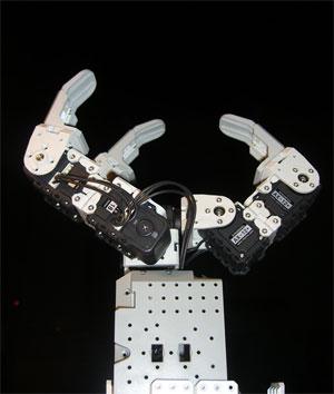 robotHandSmall.jpg