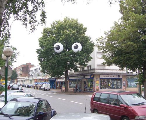 Eyeball Tree