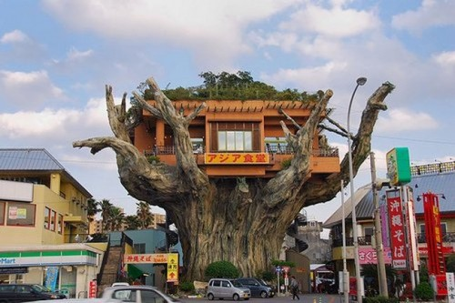 japanese-tree-restaurant01.jpg