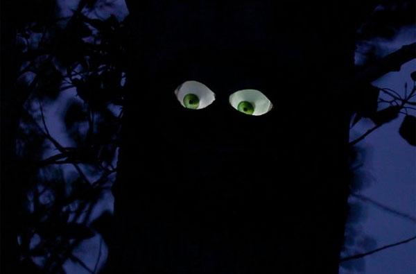 Treeeyes Night