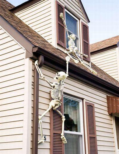 climbing skeletons.jpg