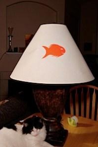 fishlampoff.jpg