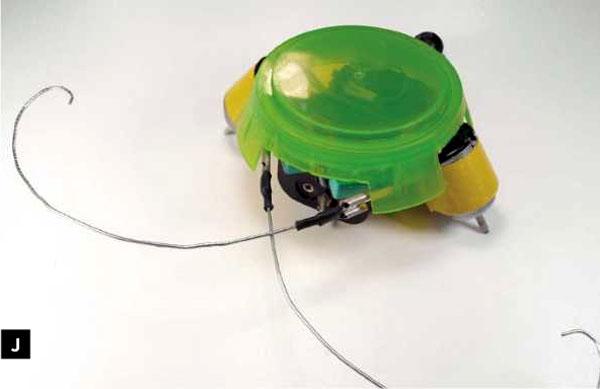 beetleBot-2j.jpg