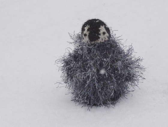 penguin fluff.jpg