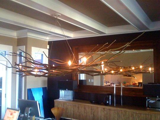 TreeBranchChandelier120408.jpg