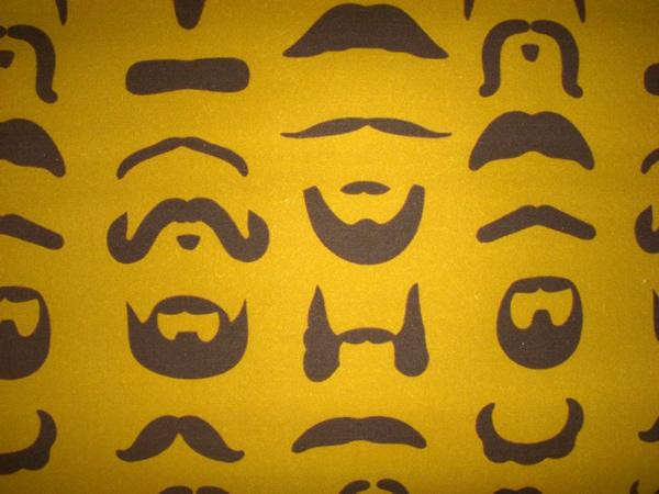 mustache_fabric.jpg