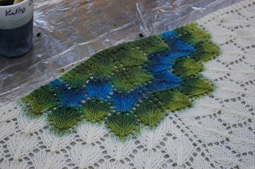shawl dyeing.jpg