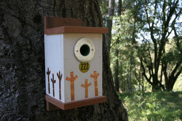 flashback_backyard_birdhouse_opener.jpg