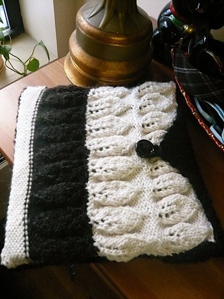 knittedlaptopcaseaskcraft.jpg