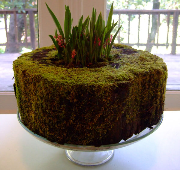 checkin-in-brookelynn-moss.jpg