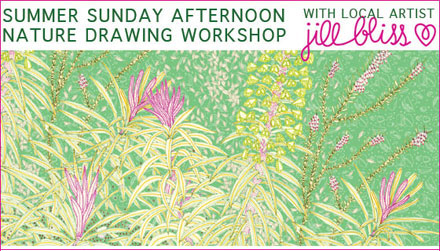 Jillblissworkshop