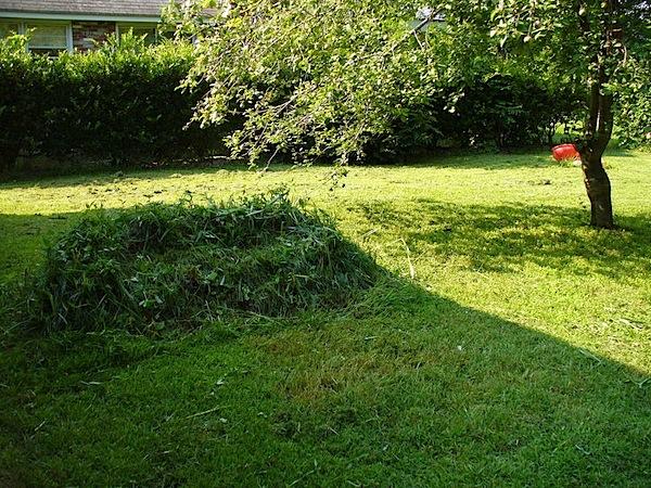 grasscouch.jpg
