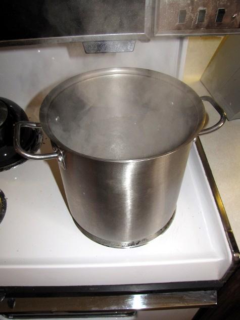 SHTMLF_boil_water.JPG