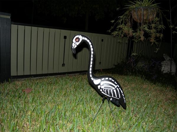 Flamingo of doom.jpg