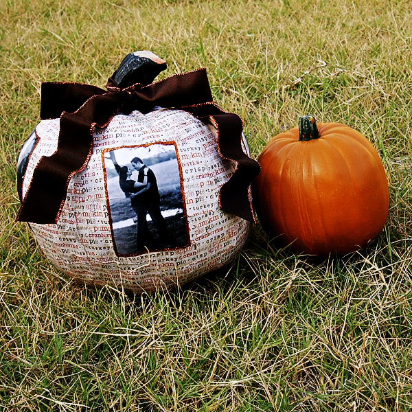 Thepictureperfectpumpkin Final