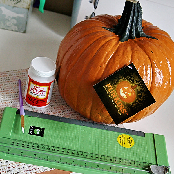 Thepictureperfectpumpkin Materials