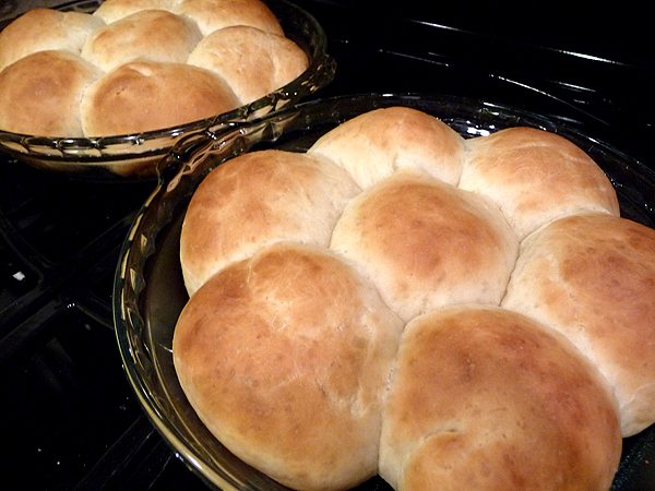 Thanksgiving Butterydinnerrolls Baked