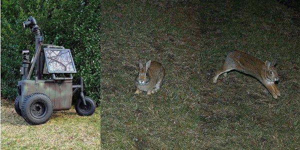 coolerbot_bunnies.jpg