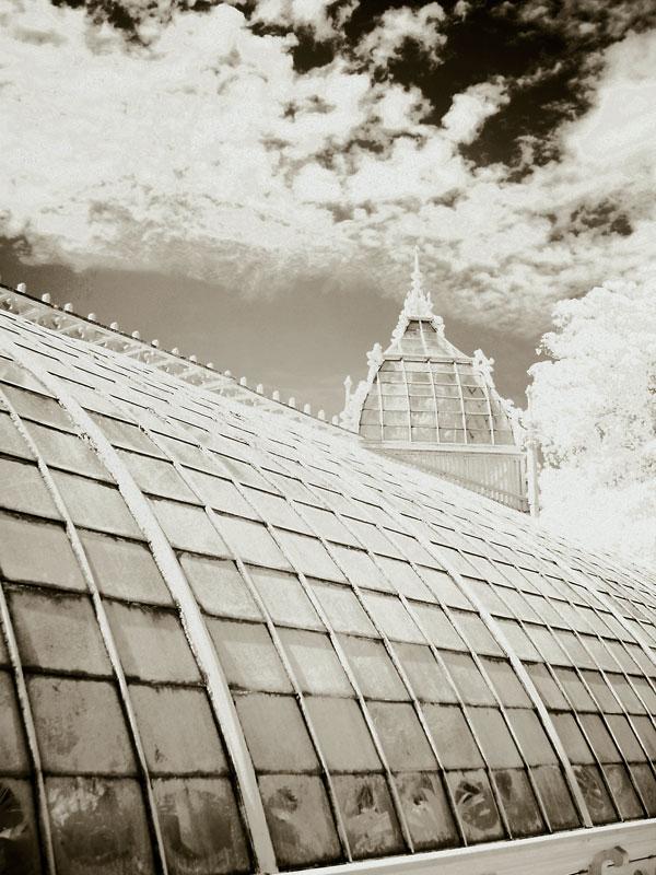 flashback-infrared-greenhouse-detail.jpg