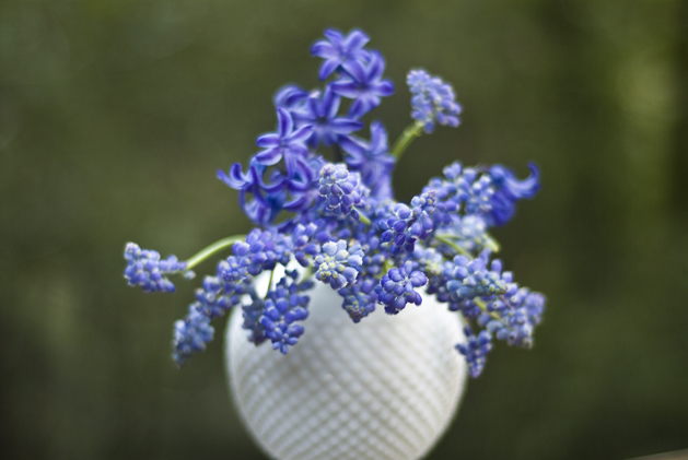 spring_bluebells_01.jpg