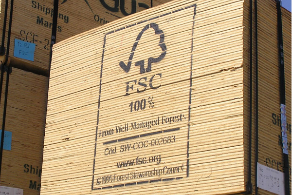 FSC plywood pic.JPG