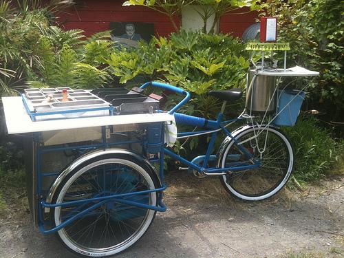 taco_bike_for_timothy.jpg