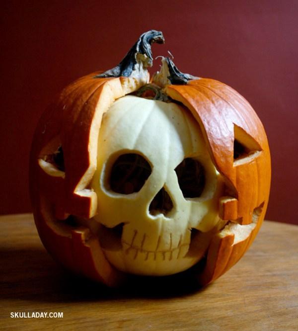 pumpkin2b.jpg