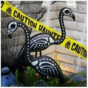 skeleton_flamingo_amazon.jpg