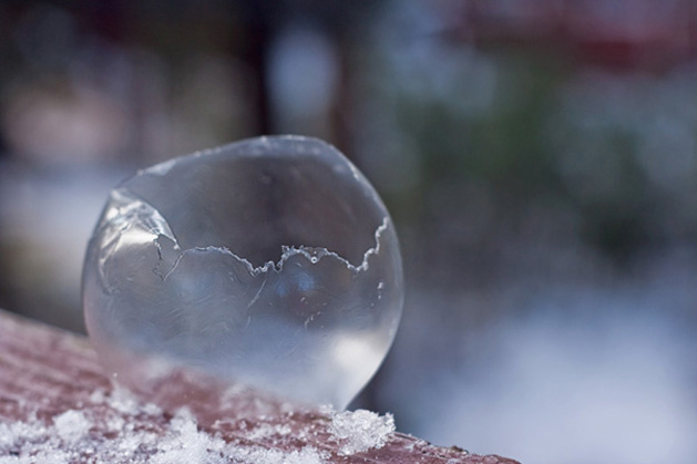 suckaface-bubble-photog-frozen-popping.jpg