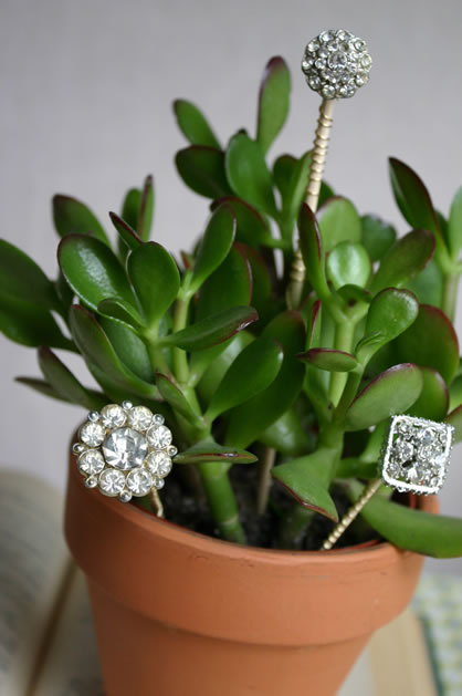plant_jewelry.jpg