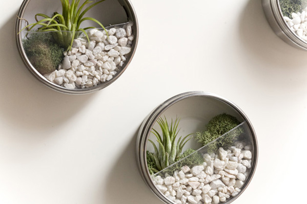 diy-vertical-terrarium-wedding-favors-01.jpg