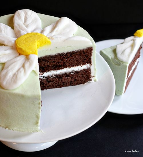 thin_mint_cake.jpg