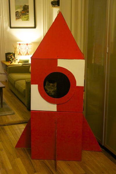 Cat_Rocket_Finished1.jpg