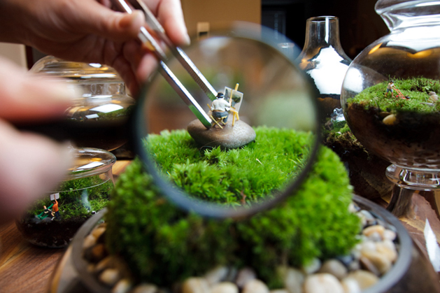 twig terrariums homepage.jpg