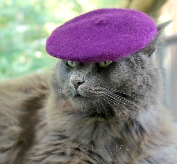 cat_beret.jpg