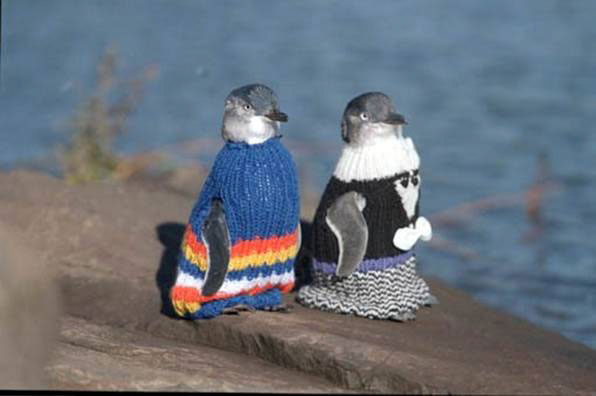 penguin_sweaters.jpeg
