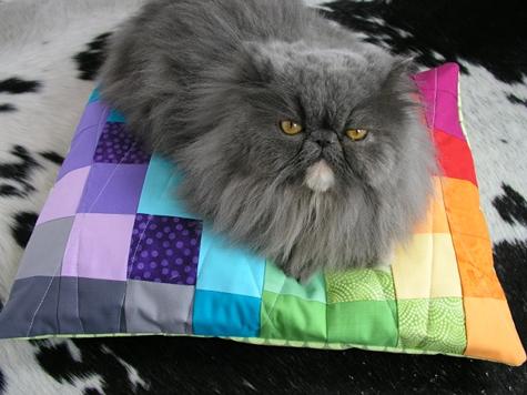 best_of_quilting_color_spectrum_pet_bed.jpg