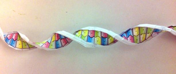 Origami DNA | Make: - photo#19