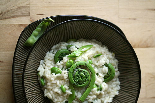 Fiddlehead_risotto.jpg
