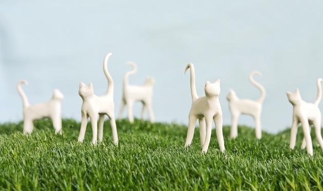 Field_of_kitties_flickr_roundup.jpg