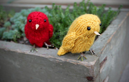 birdsinplanter.jpg