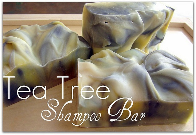 soapqueen_tea_tree_shampoo_bars.jpg