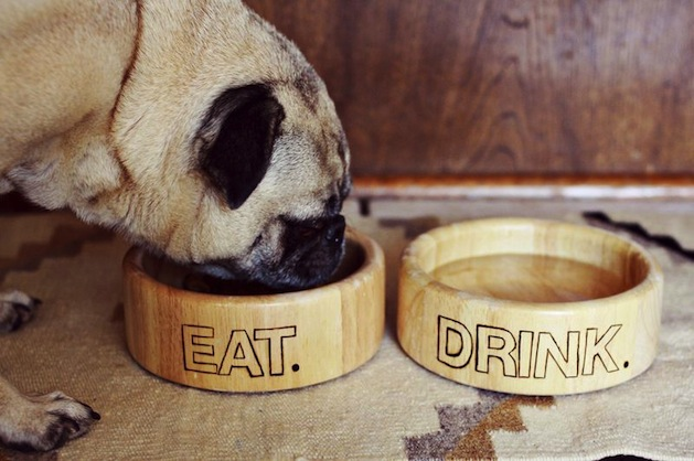 abeautifulmess_wood_burned_pet_bowls.jpg