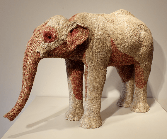 sunflower-seed-elephant-1.png