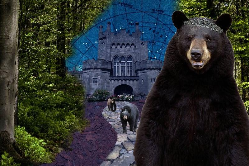 dannies-bears