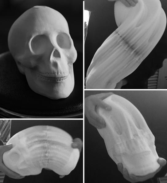 hongbo flex paper skull