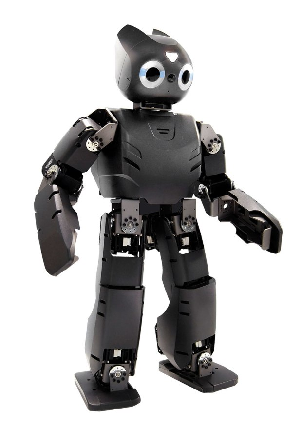 small black humanoid robot with black plastic chasis and oversized eyes