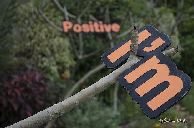 05_Orange_Energy_flickr_roundup